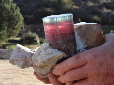 San Diego Mines Dawson Pala Chief Tourmaline